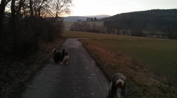 Ein Samstag mit Felix und Linus